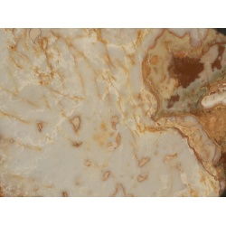 exotic_white_and_brown_onyx_slabs