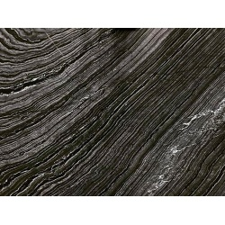 jurassic_black_marble_slab_polished